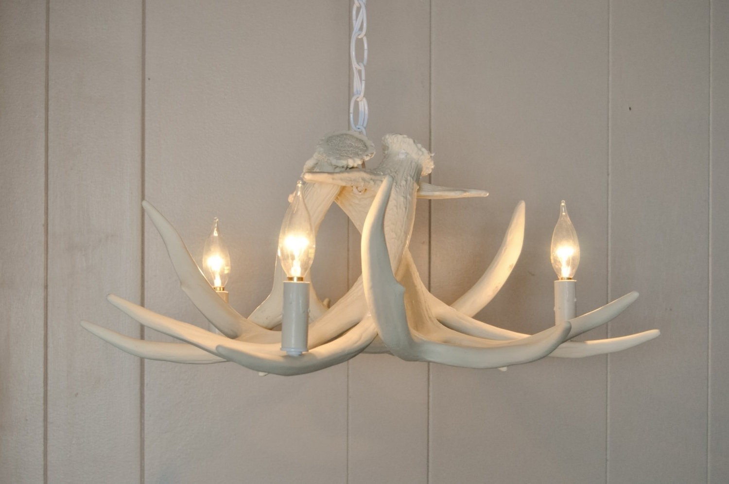 2018 Turquoise Antler Chandeliers With Regard To White Antler Chandelier – Nurani (View 1 of 20)