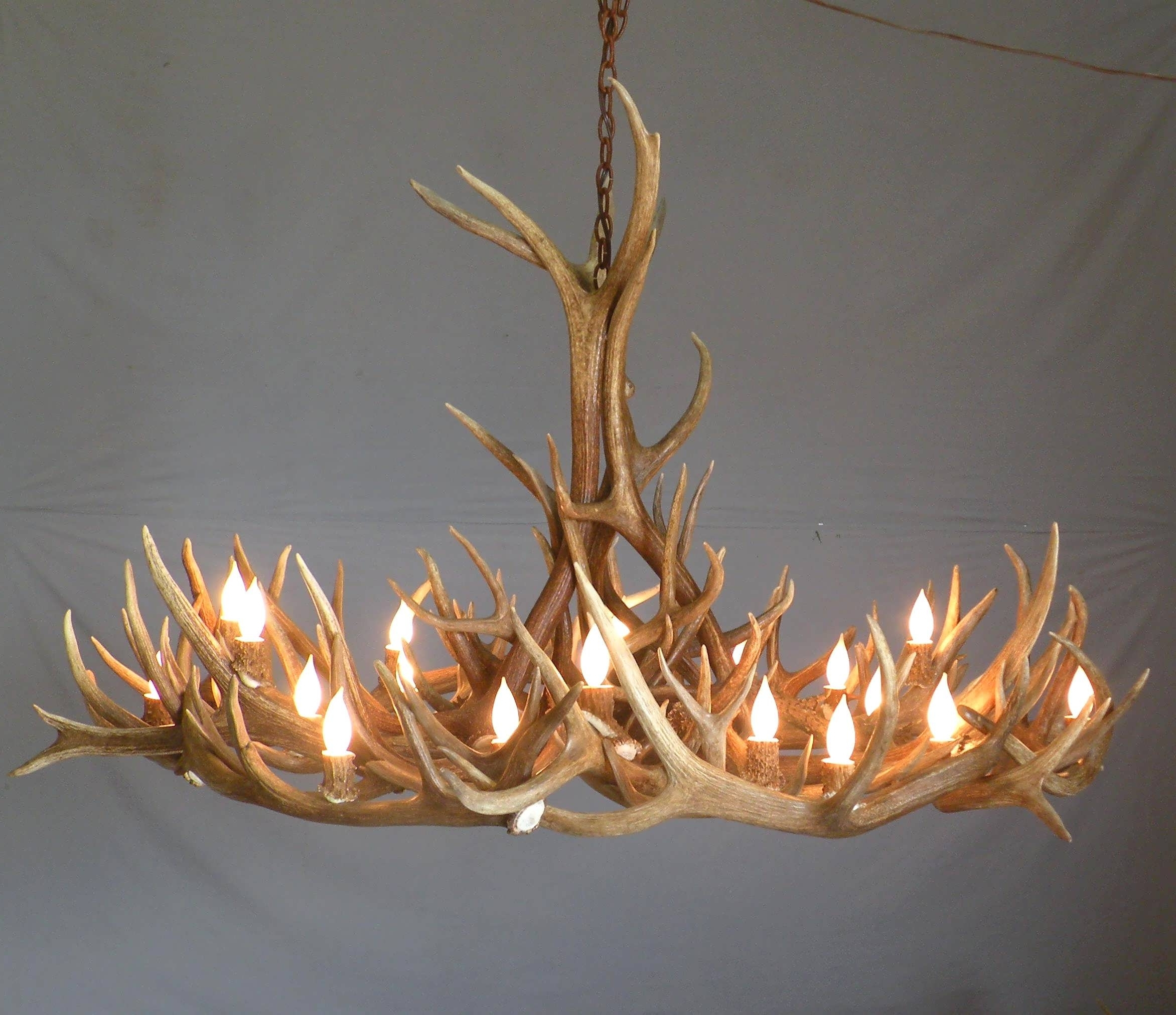 2018 White Antler Chandelier In Chandelier : Small Antler Chandelier White Antler Light Kids (View 1 of 20)