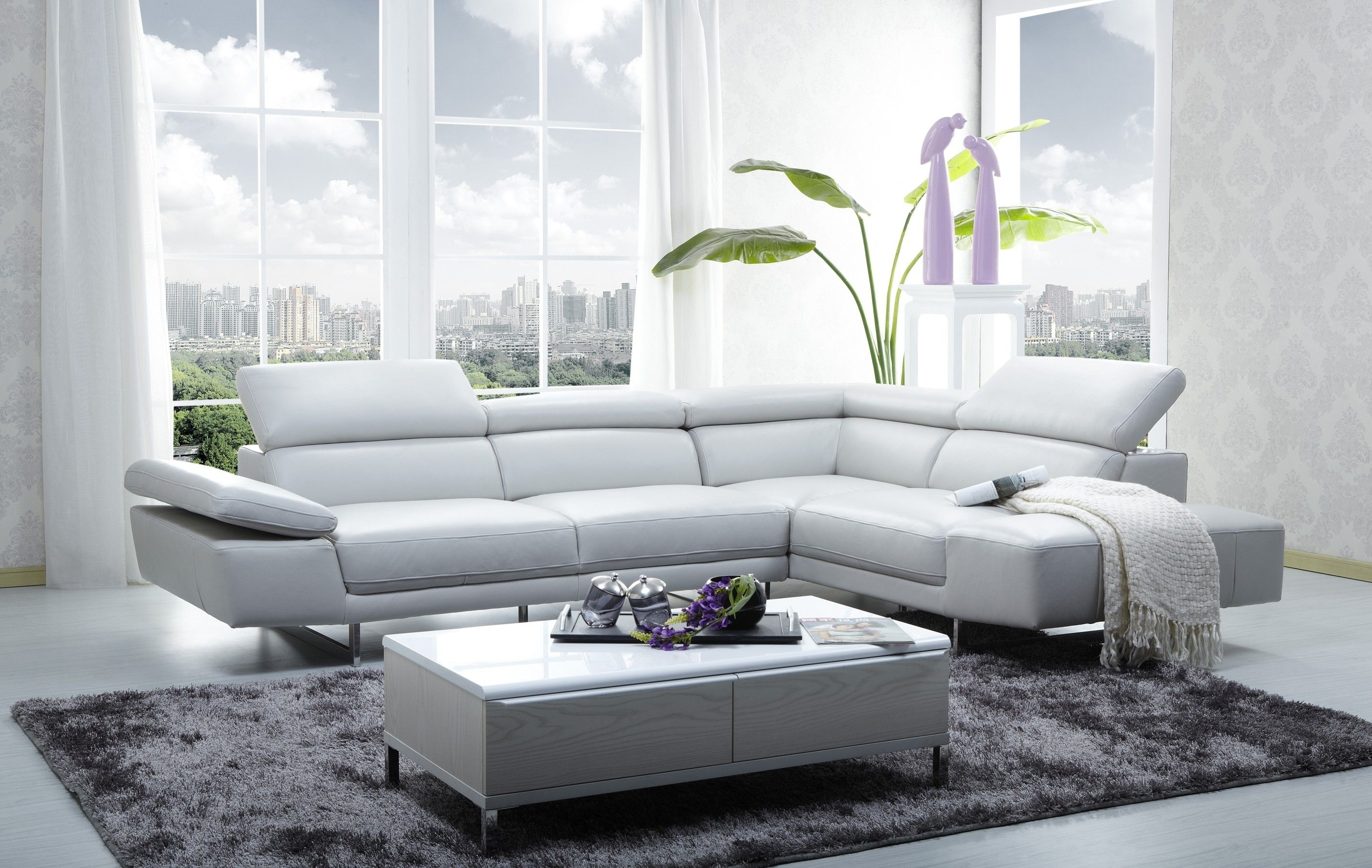 20 Best Sectional Sofas At Chicago