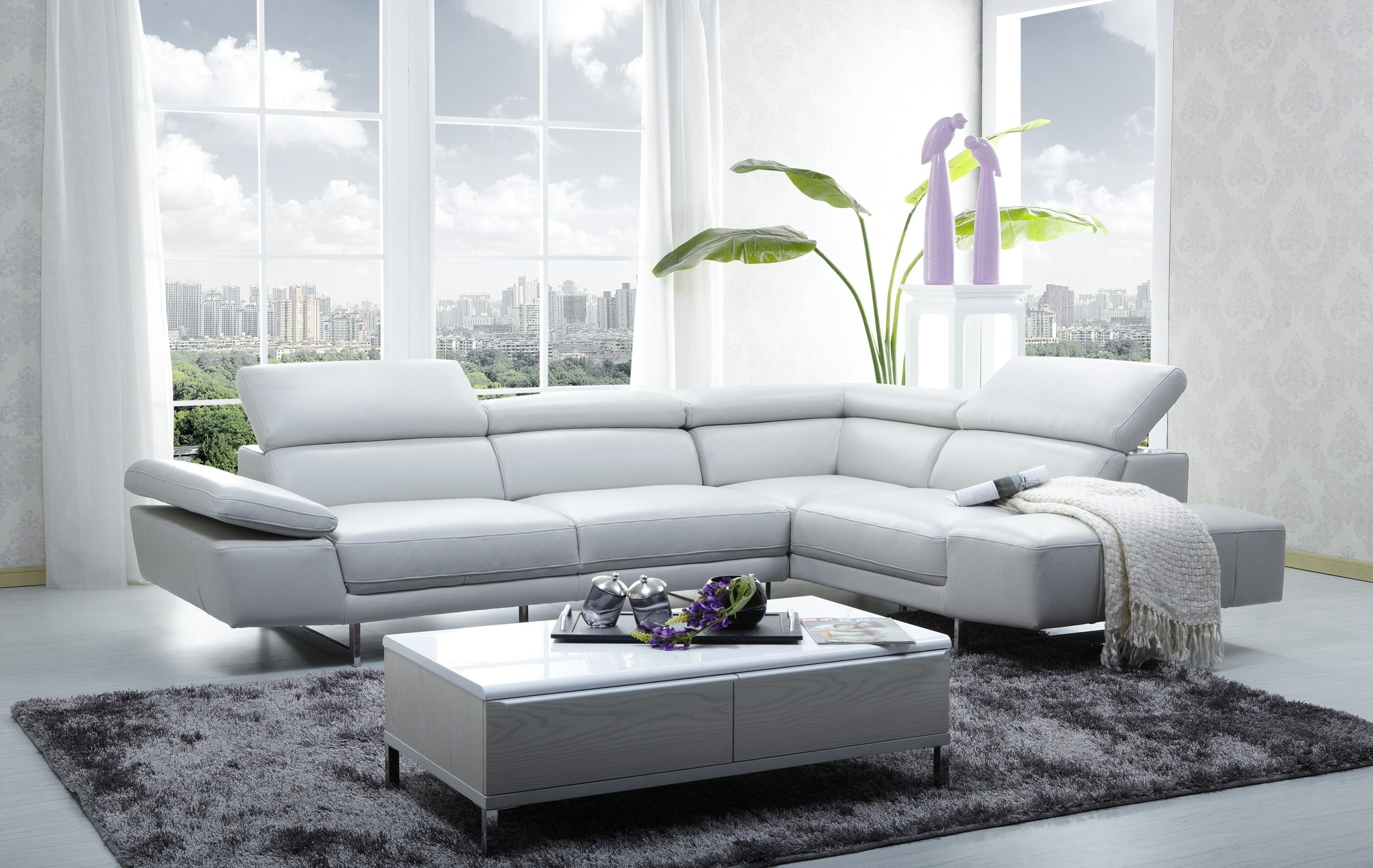 Featured Photo of Sectional Sofas At Calgary