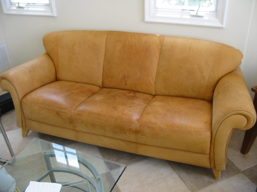 Aniline Leather Sofas In Widely Used Aniline Leather Sofa Suppliers Furniture For Sale Cleaning Dfs On (View 4 of 20)
