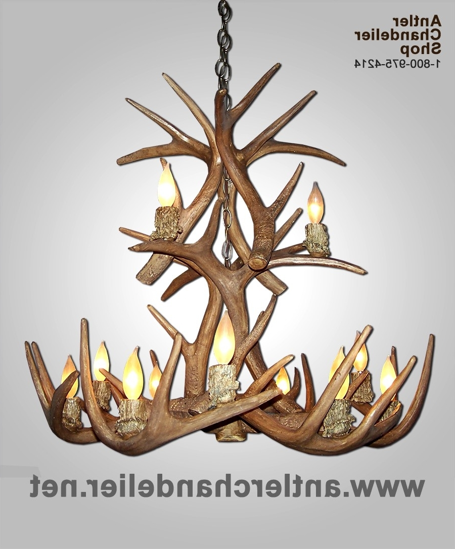 Antler Chandelier Pertaining To White Antler Chandelier (View 3 of 20)