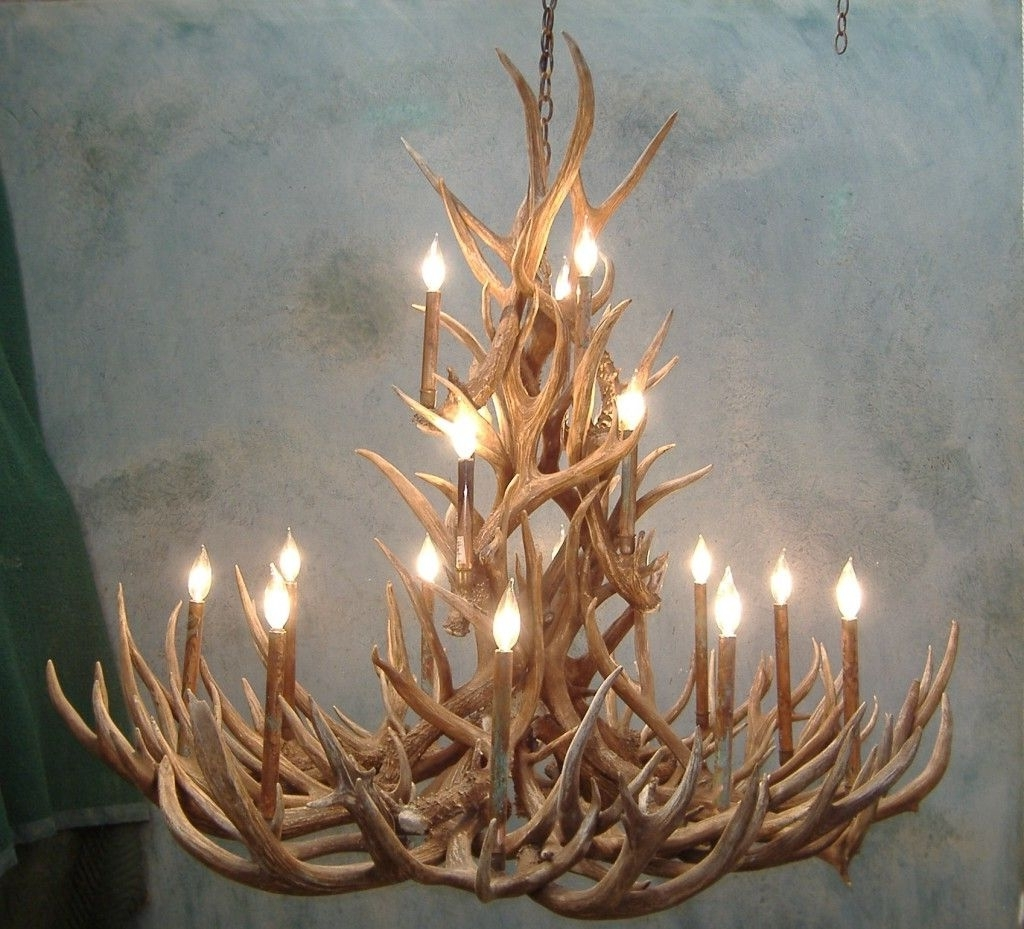 Antler Chandelier (Gallery 5 of 20)