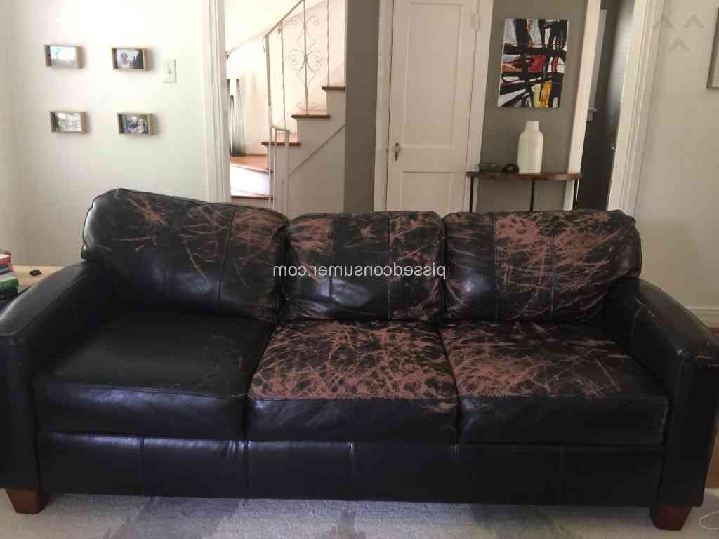 Best And Newest Jennifer Convertibles Sectional Sofas For Jennifer Convertibles – Peeling 'leather ' Sofa Dec 28,  (View 10 of 20)