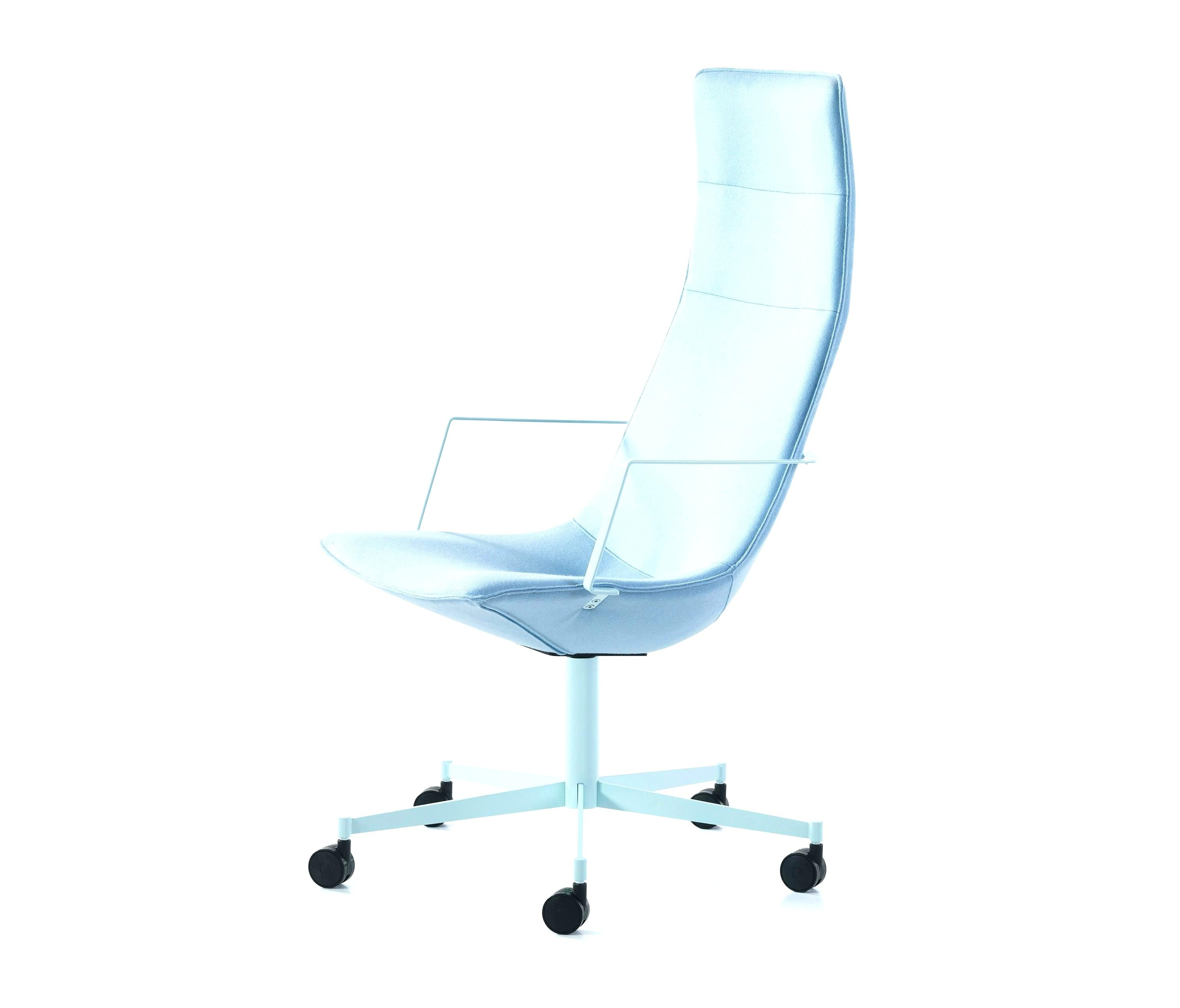 Best And Newest Xl Executive Office Chairs Throughout Office Ideas: Marvellous Xl Office Chairs Images (View 3 of 20)