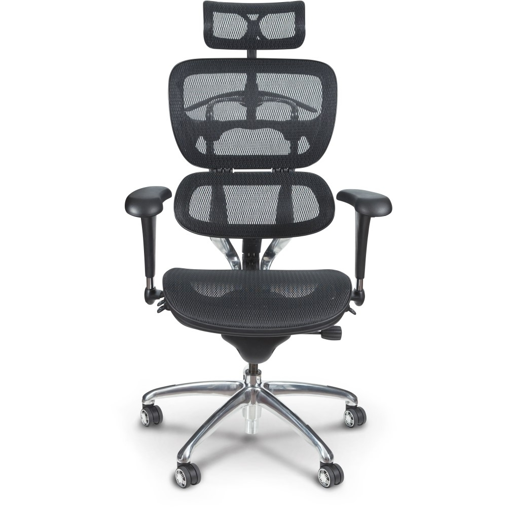Butterfly Ergonomic Executive Office Chair – Mooreco Inc For Trendy Ergonomic Executive Office Chairs (View 6 of 20)