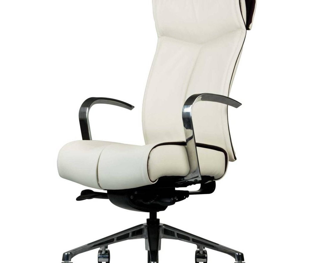 Chair : Office Ergonomic Chair Favorite Ergonomic Office Chair Within 2018 Ergonomic Ultra Modern White Executive Office Chairs (View 4 of 20)