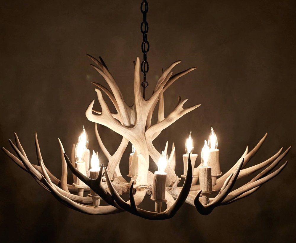 Chandeliers Design : Marvelous Chandelier Ceiling Fan Kit For In Most Current Turquoise Antler Chandeliers (View 7 of 20)