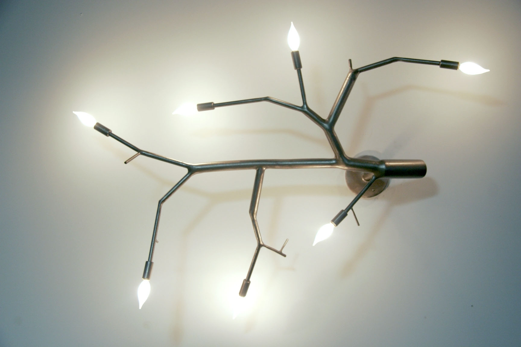 Current Poehlmann Contemporary Metal Branch Lighting In Wall Mounted Chandeliers (View 2 of 20)