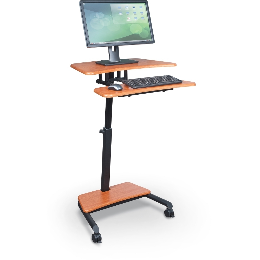 Designs Ideas And Decors Throughout Fashionable Standing Computer Desks (View 11 of 20)