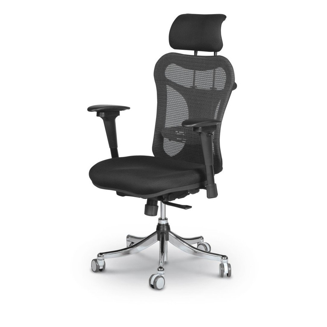 Ergo Ex Ergonomic Office Chair – Mooreco Inc Throughout Most Recently Released Ergonomic Executive Office Chairs (View 18 of 20)