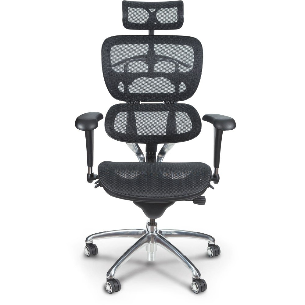 Executive Office Chairs With Adjustable Lumbar Support Inside Well Known Butterfly Ergonomic Executive Office Chair – Mooreco Inc (View 4 of 20)