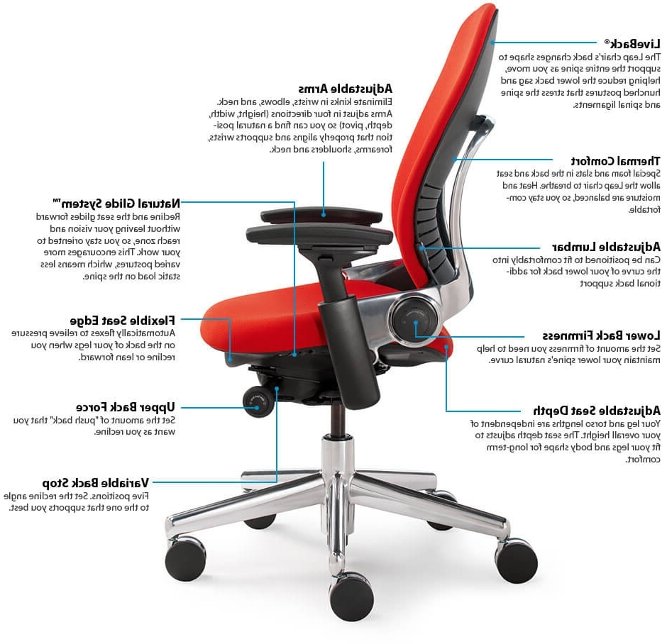Executive Office Chairs With Adjustable Lumbar Support With Most Up To Date Office Chair With Adjustable Lumbar Support – Desk Decorating (View 6 of 20)