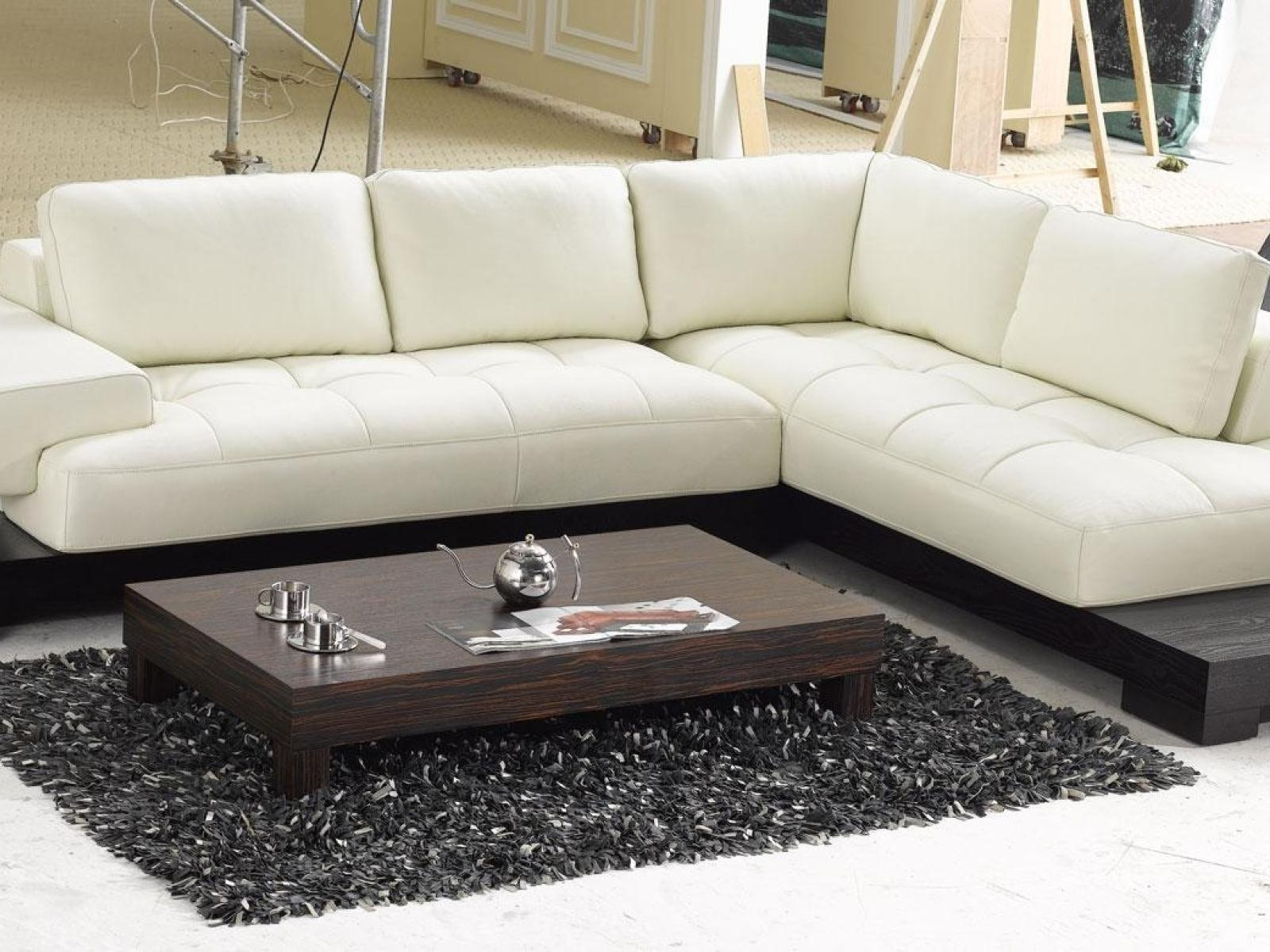 Furniture Awesome Contemporary Leather Couches Modern White Sofas Regarding Well Known High Point Nc Sectional Sofas (View 6 of 20)