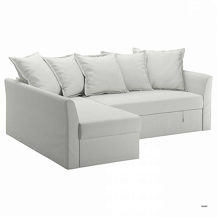 King Size Sleeper Sofas For Trendy King Size Sleeper Sofas Inspirational Sleeper Sofas & Chair Beds (View 7 of 20)