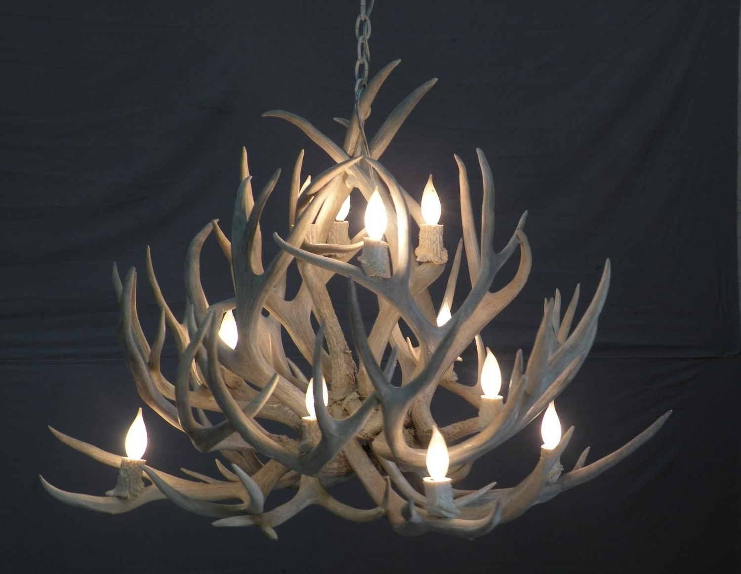 Lamps: Antler Chandelier 6 Light Large Antler Chandelier Uk Lucite Inside Most Popular Turquoise Antler Chandeliers (View 9 of 20)
