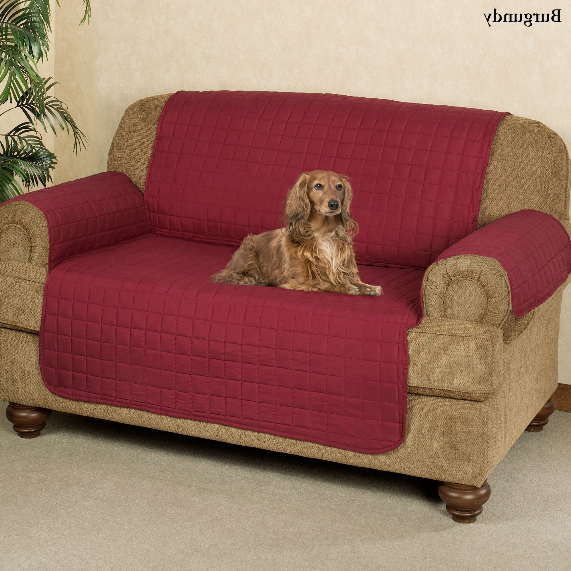 Lazy Sofa Chairs Throughout Preferred Microfiber Pet Furniture Covers With Tuck In Flaps (View 6 of 20)