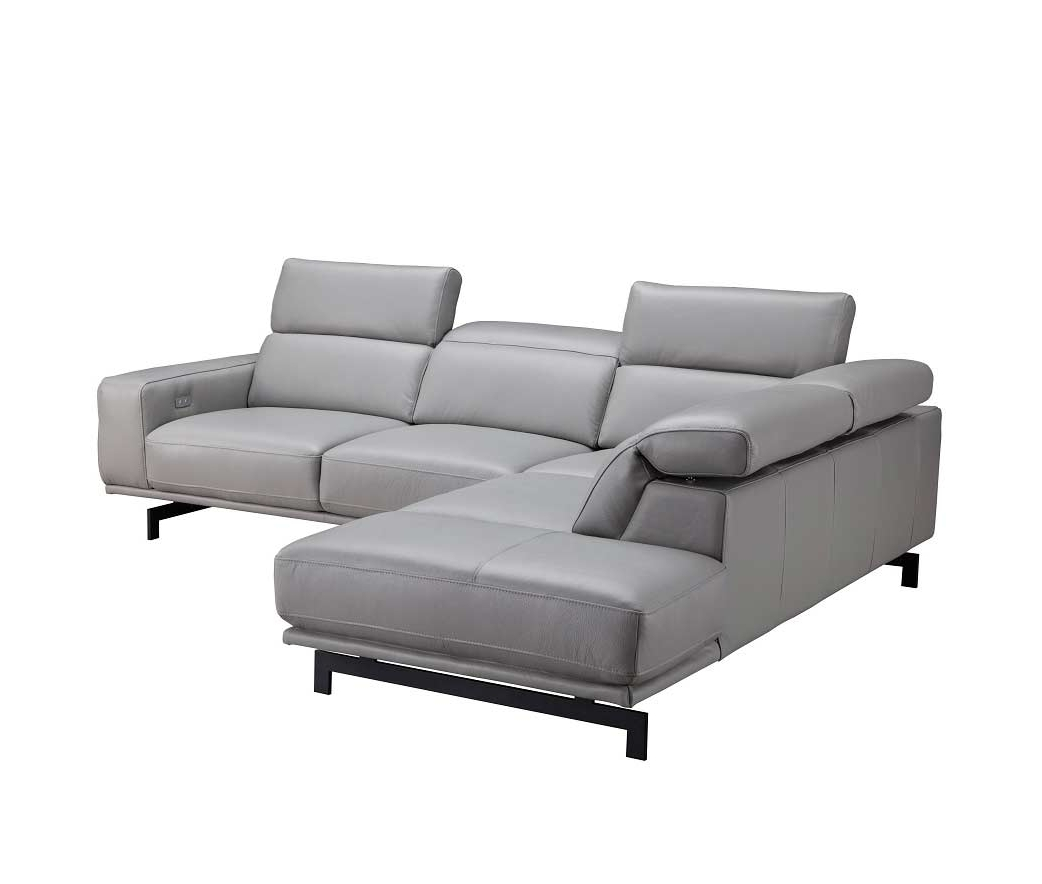 Leather Sectionals For Nj Sectional Sofas (View 9 of 20)