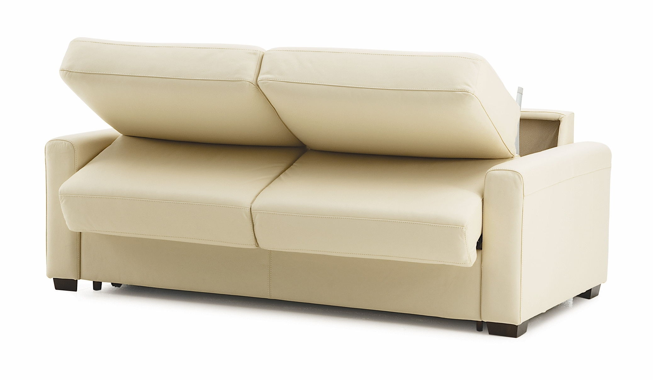 Maximizing Small Spaces Using White Leather Twin Size Sleeper Sofa For Well Known Twin Sleeper Sofa Chairs (View 7 of 20)