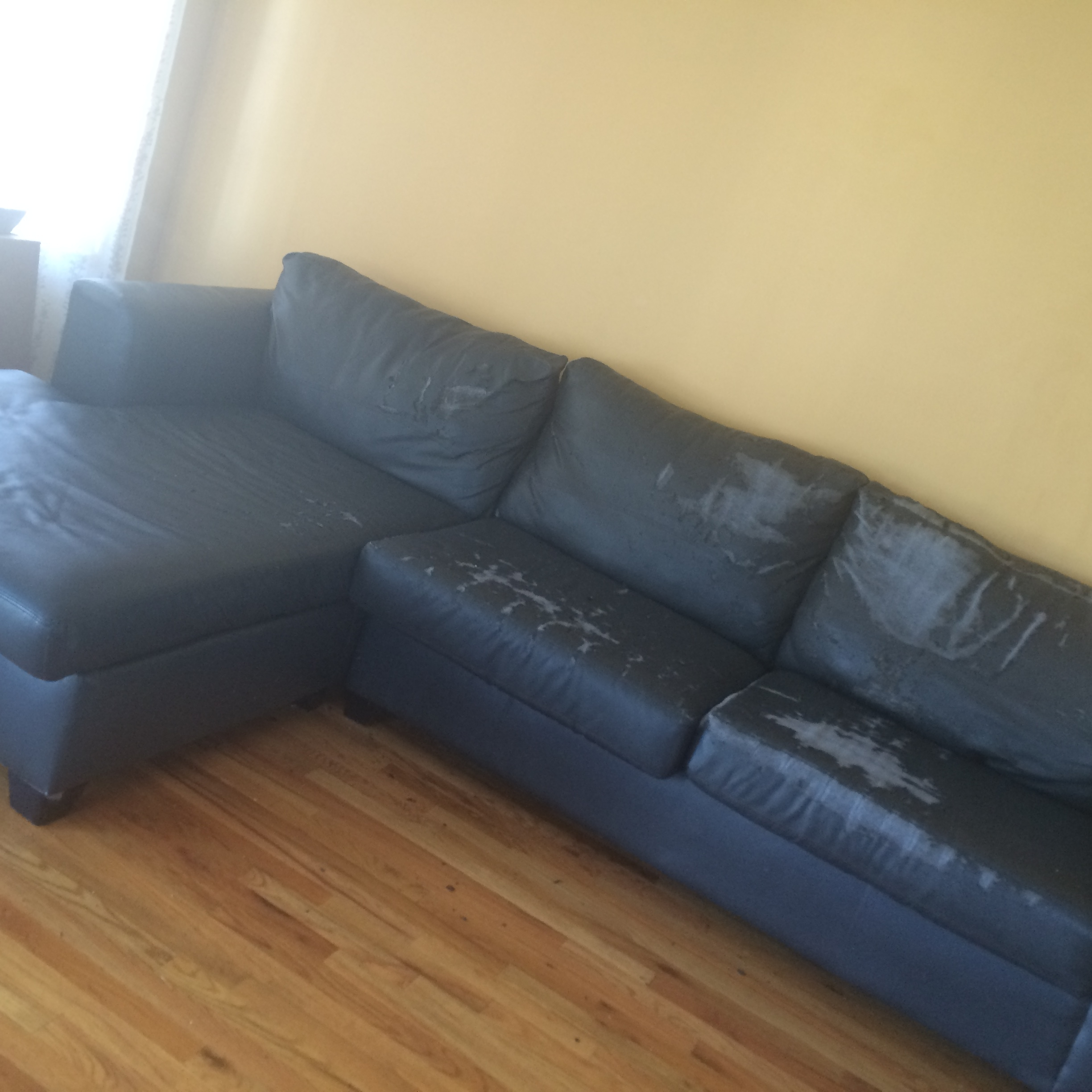 Most Current Jennifer Sofas With Regard To 10 Reviews Of Jennifer Convertibles Inc Leather Sofa (View 17 of 20)