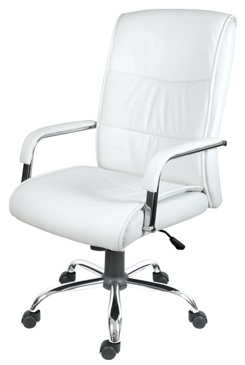 Most Popular Office Chairs : Best Ergonomic Office Chair Extra High Office Pertaining To Petite Executive Office Chairs (View 14 of 20)