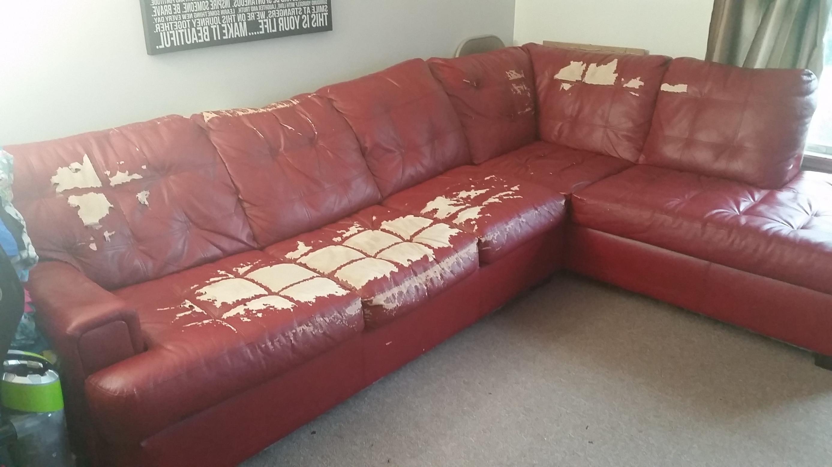Most Recent Jennifer Convertibles Sectional Sofas With Jennifer Convertibles Leather Sofa (View 16 of 20)