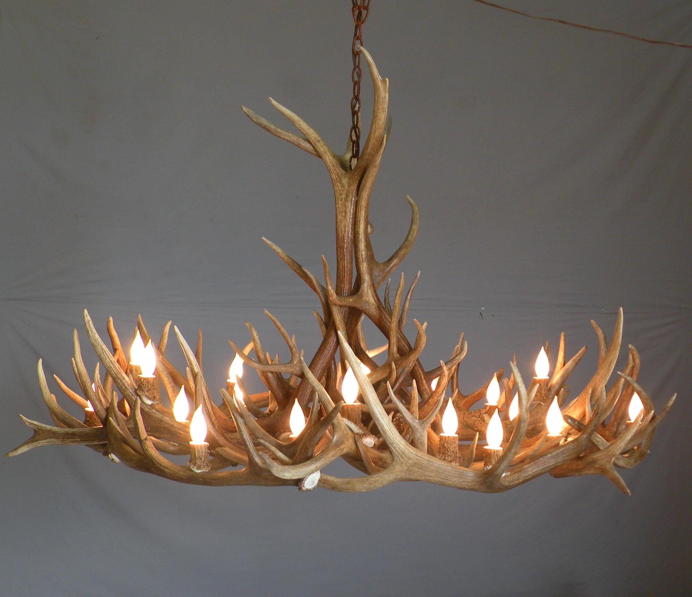 Most Up To Date Lighting: Elk Antler Chandelier For Inspiring Unique Lighting Design Inside Stag Horn Chandelier (View 7 of 20)