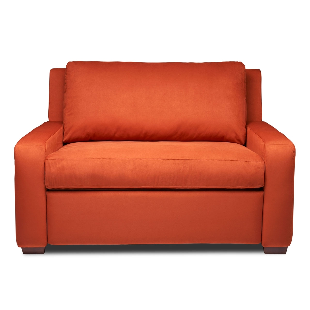 Most Up To Date Twin Size Sleeper Sofa Chairs – Nrhcares Throughout Twin Sleeper Sofa Chairs (View 8 of 20)