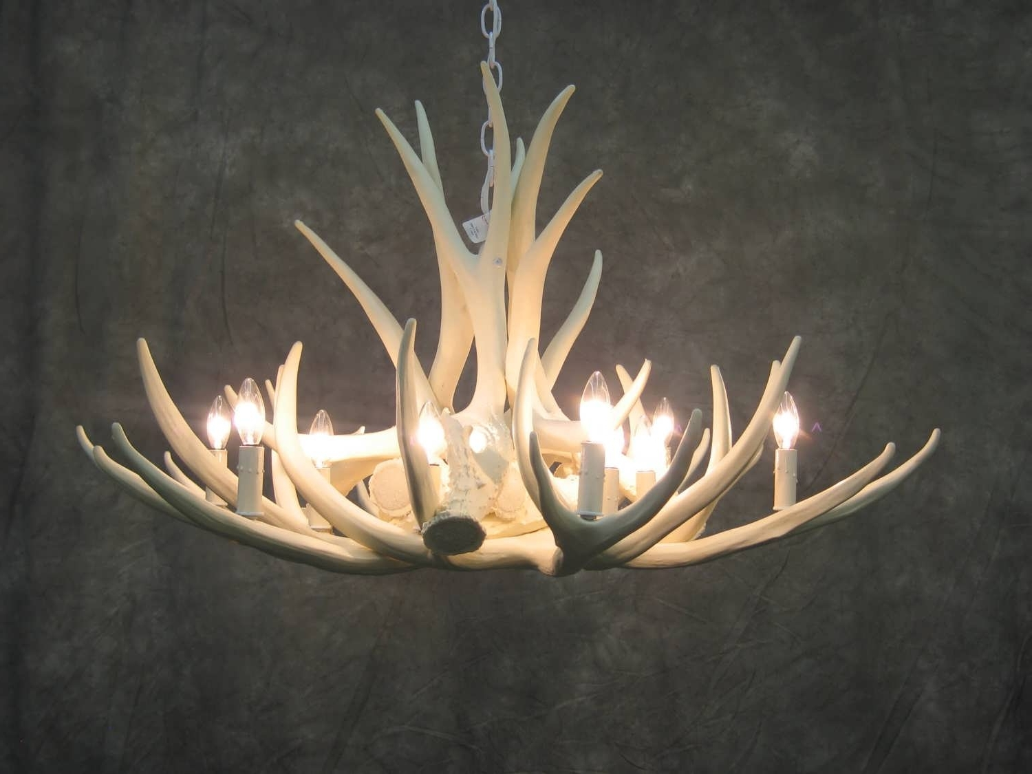Newest Stag Horn Chandelier Throughout Chandelier : Rustic Lighting Tiffany Chandelier Stag Horn Chandelier (View 8 of 20)