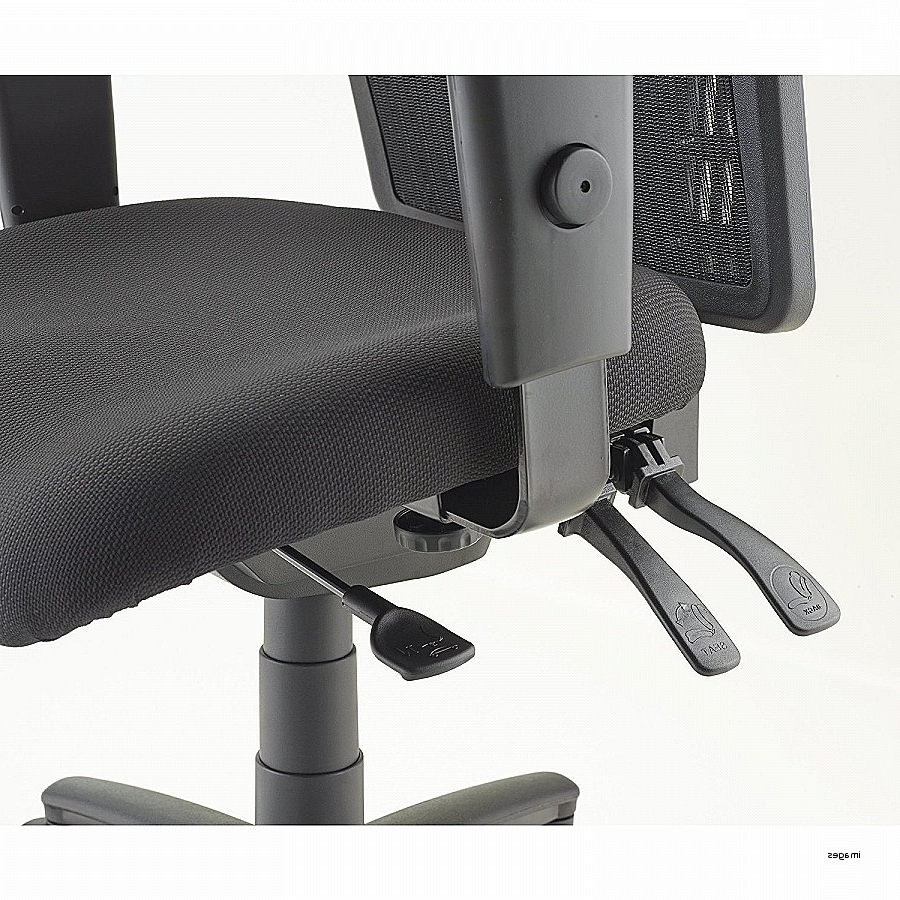 Petite Executive Office Chairs Within Widely Used Office Chair (View 17 of 20)