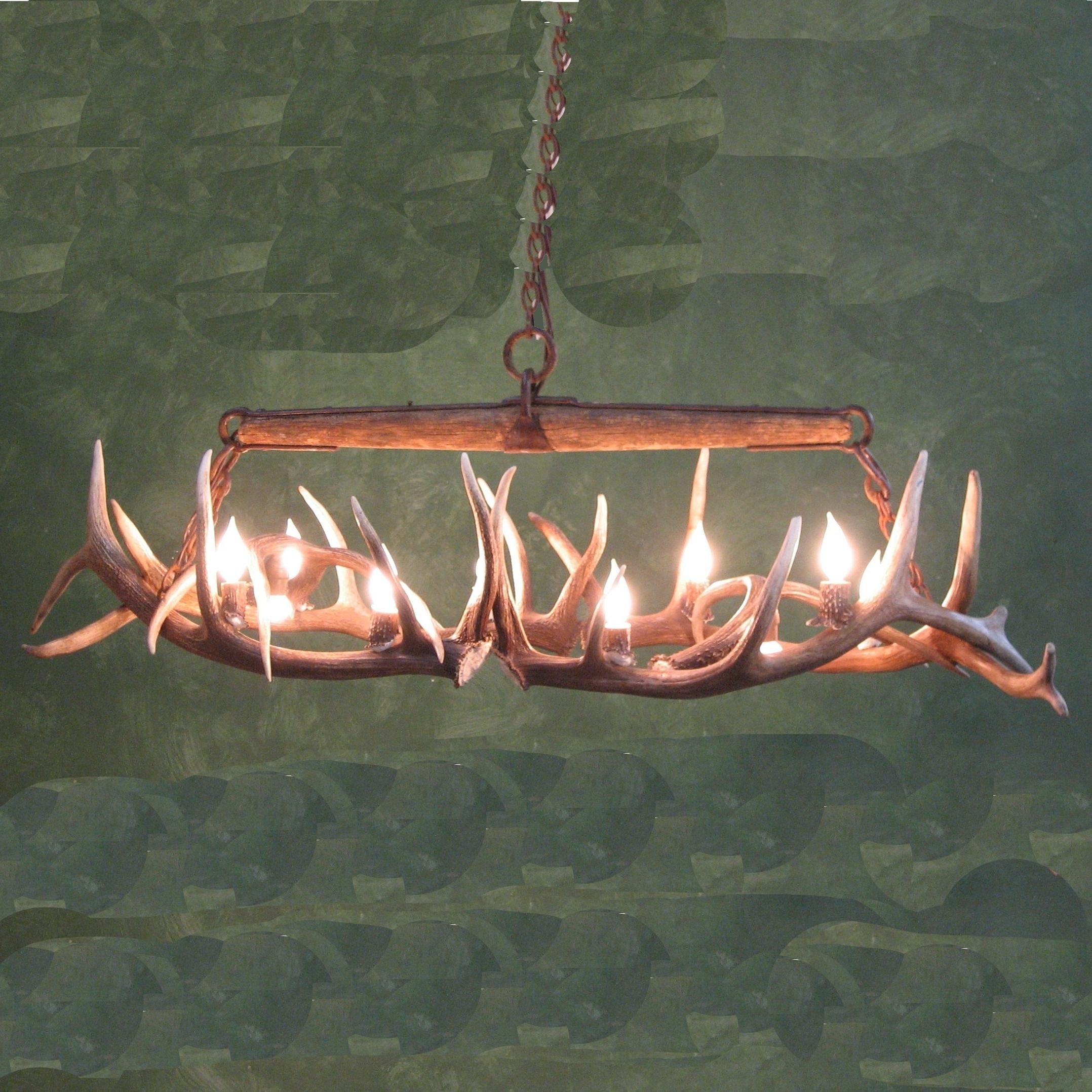 Popular Lighting: Elk Antler Chandelier For Inspiring Unique Lighting Design Within Stag Horn Chandelier (View 11 of 20)