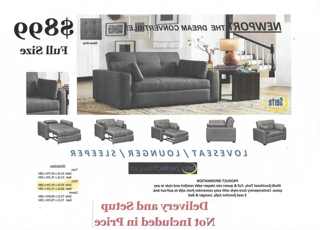 Popular Newport Sofas Throughout Convertible Sofas – The Futon Experience (View 16 of 20)