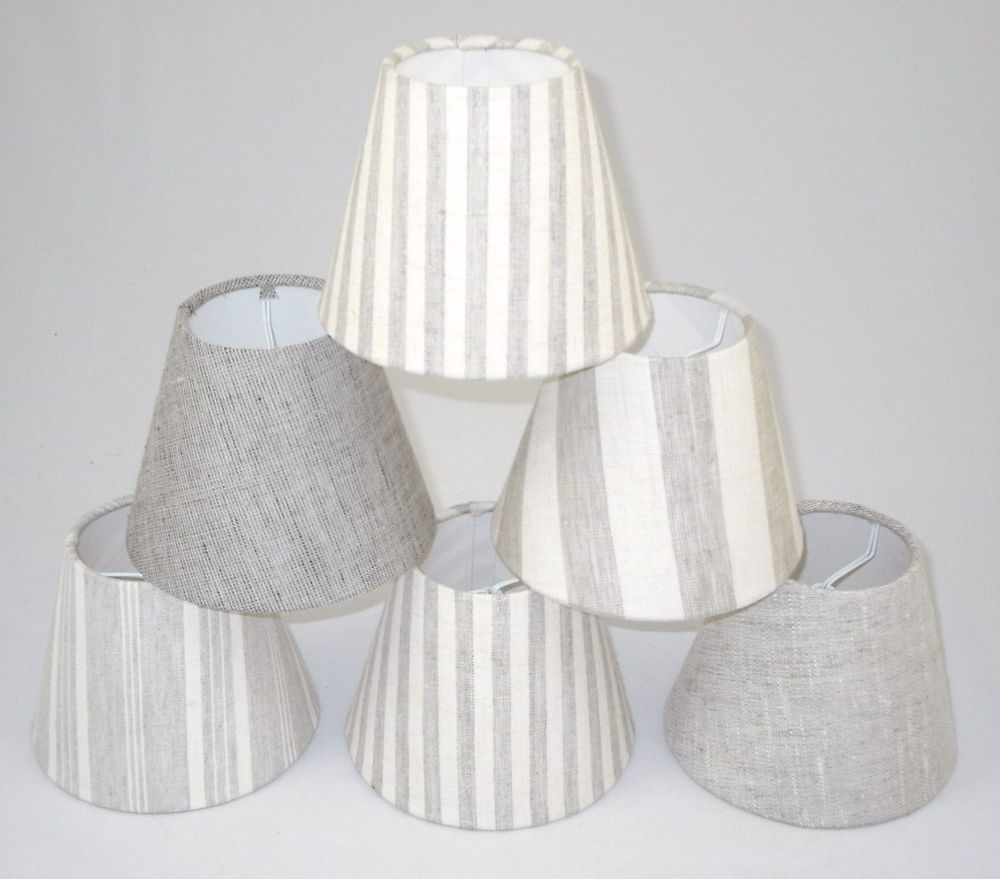 Popular Small Chandelier Lamp Shades With Regard To Lamp Shades Small Master Of Lamp And Lighting – Aguasomos (View 13 of 20)