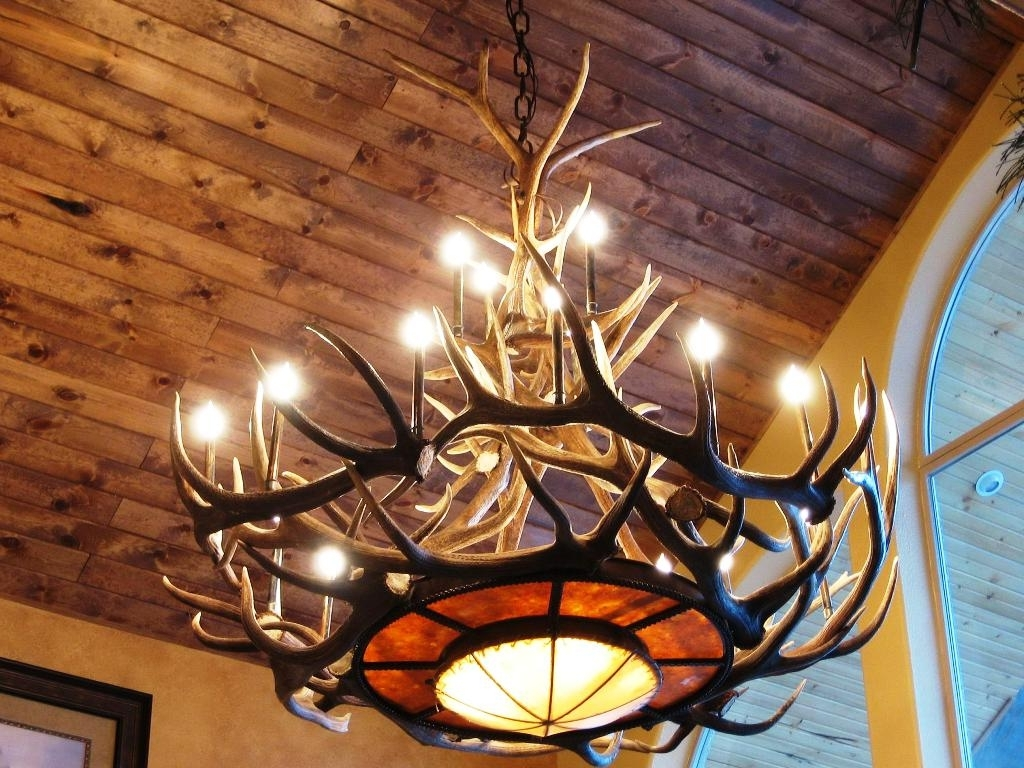Preferred White Antler Chandelier For White Faux Antler Chandelier : Faux Antler Chandelier For The (View 20 of 20)