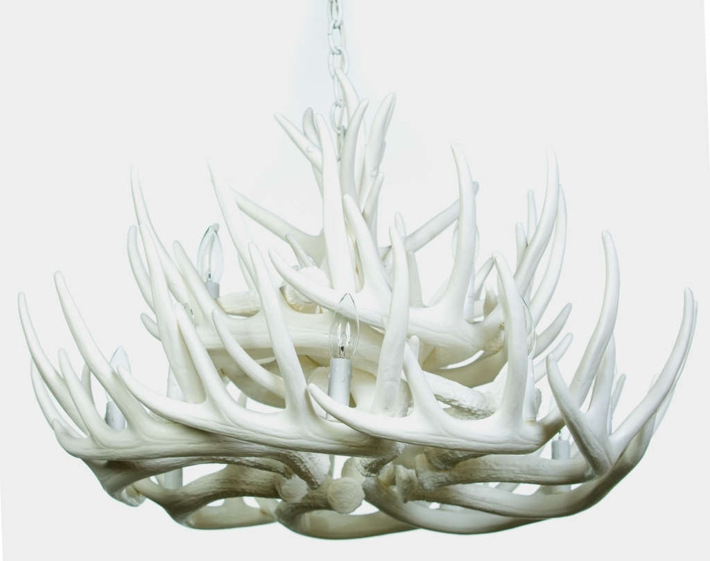 Preferred White Antler Chandelier Intended For Pure White Antler Lights (View 13 of 20)