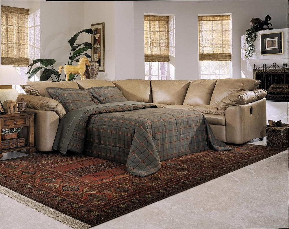 Pull Out Beds Sectional Sofas Pertaining To Favorite Sofa : Sofas And Sectionals Small Apartment Sleeper Sofa Red Sofa (View 20 of 20)