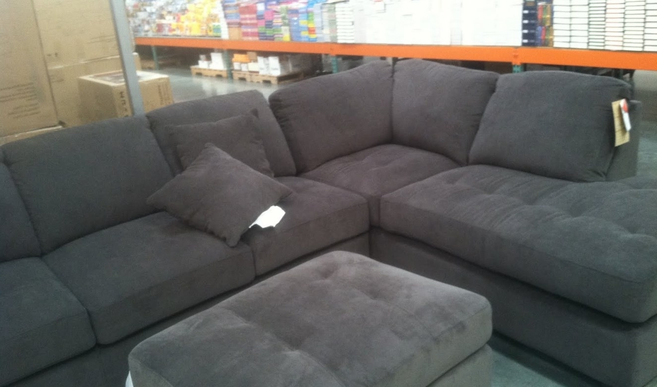 Recent Photos Individual Piece Sectional Sofas – Mediasupload With Individual Piece Sectional Sofas (View 15 of 20)