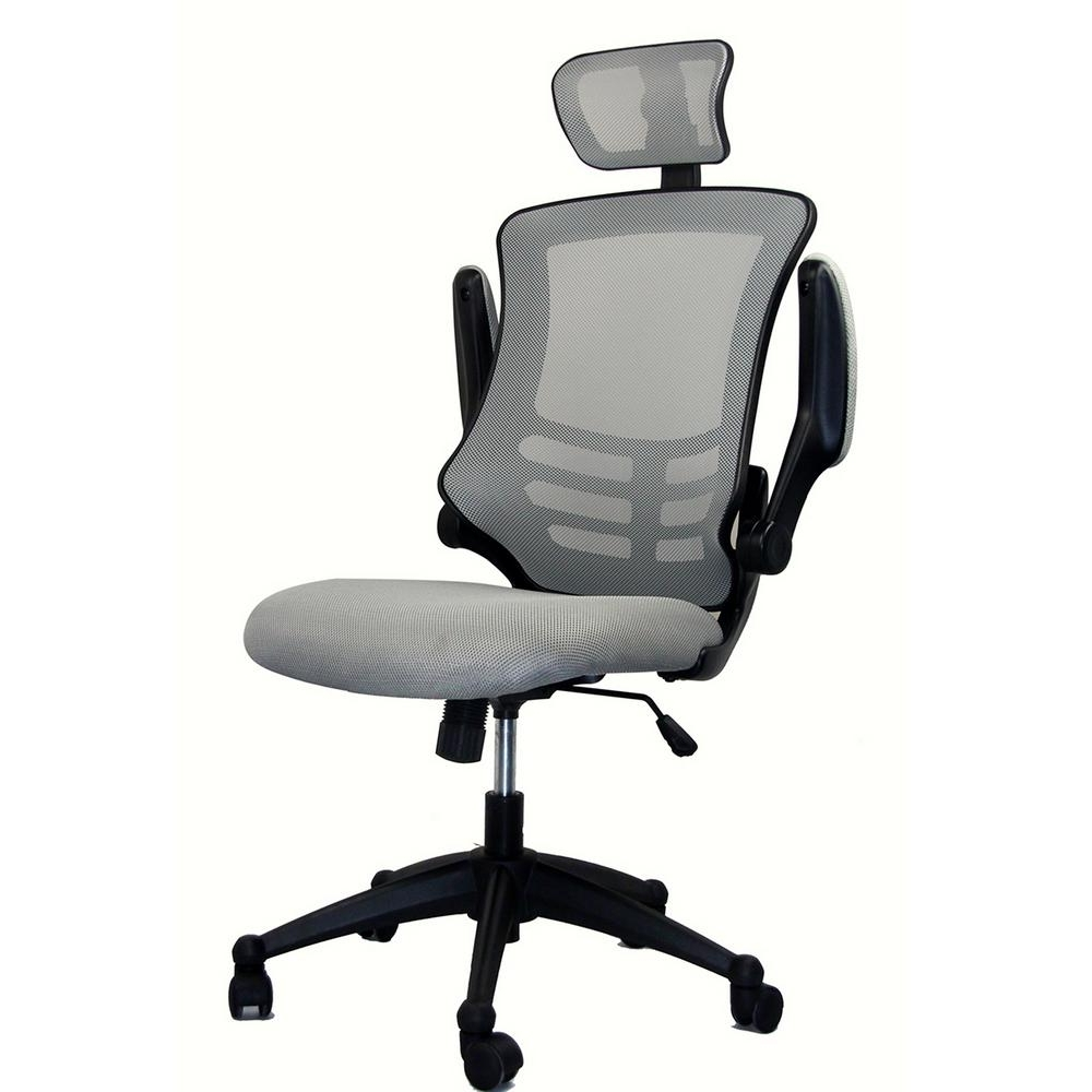 Silver Grey Modern High Back Mesh Executive Office Chair With Intended For Most Current Executive Office Chairs With Headrest (View 16 of 20)