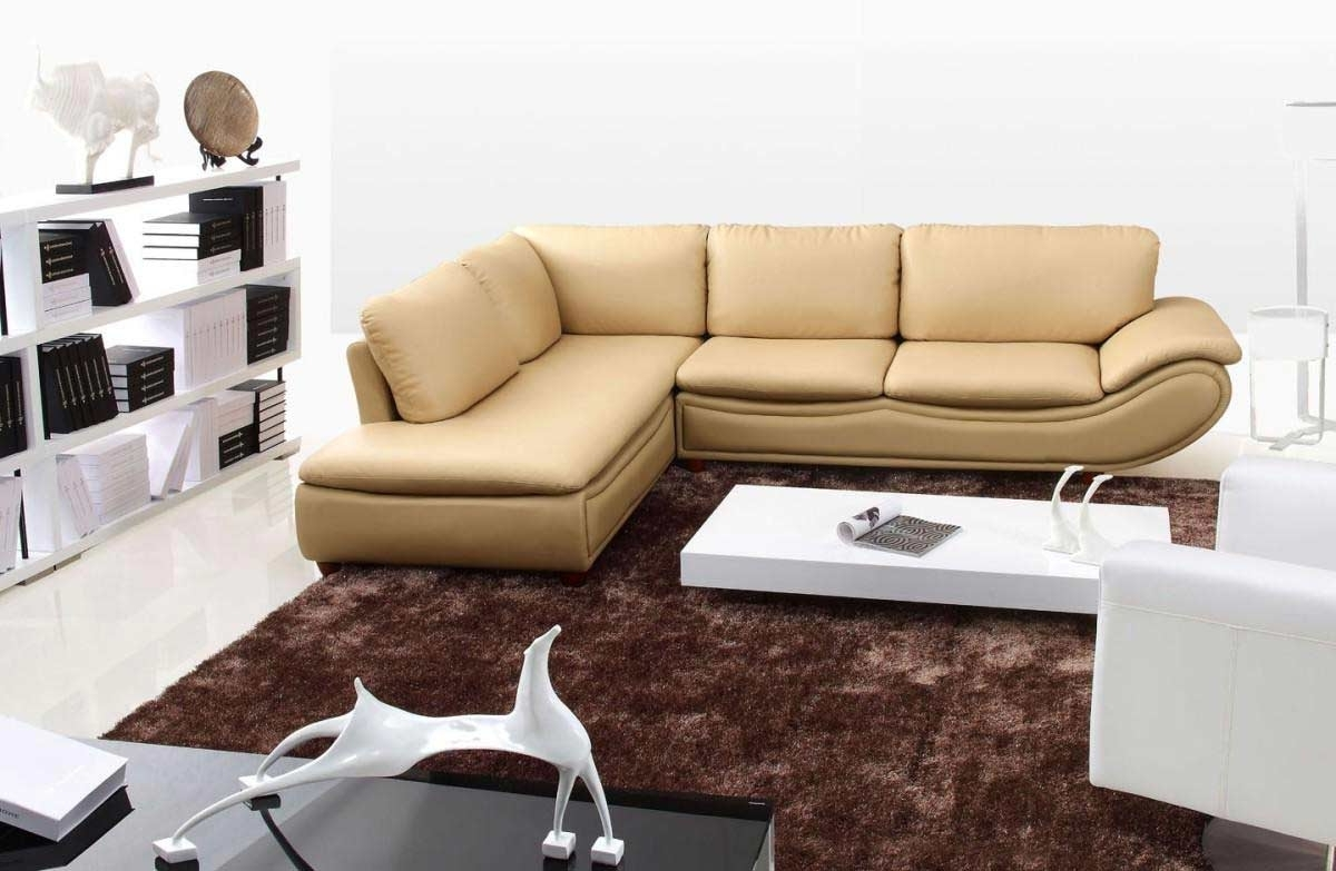 Small Sectional Sofas For Small Spaces Throughout Preferred Beauty Leather Sectional Sofas : Modern Contemporary Sectional (View 17 of 20)