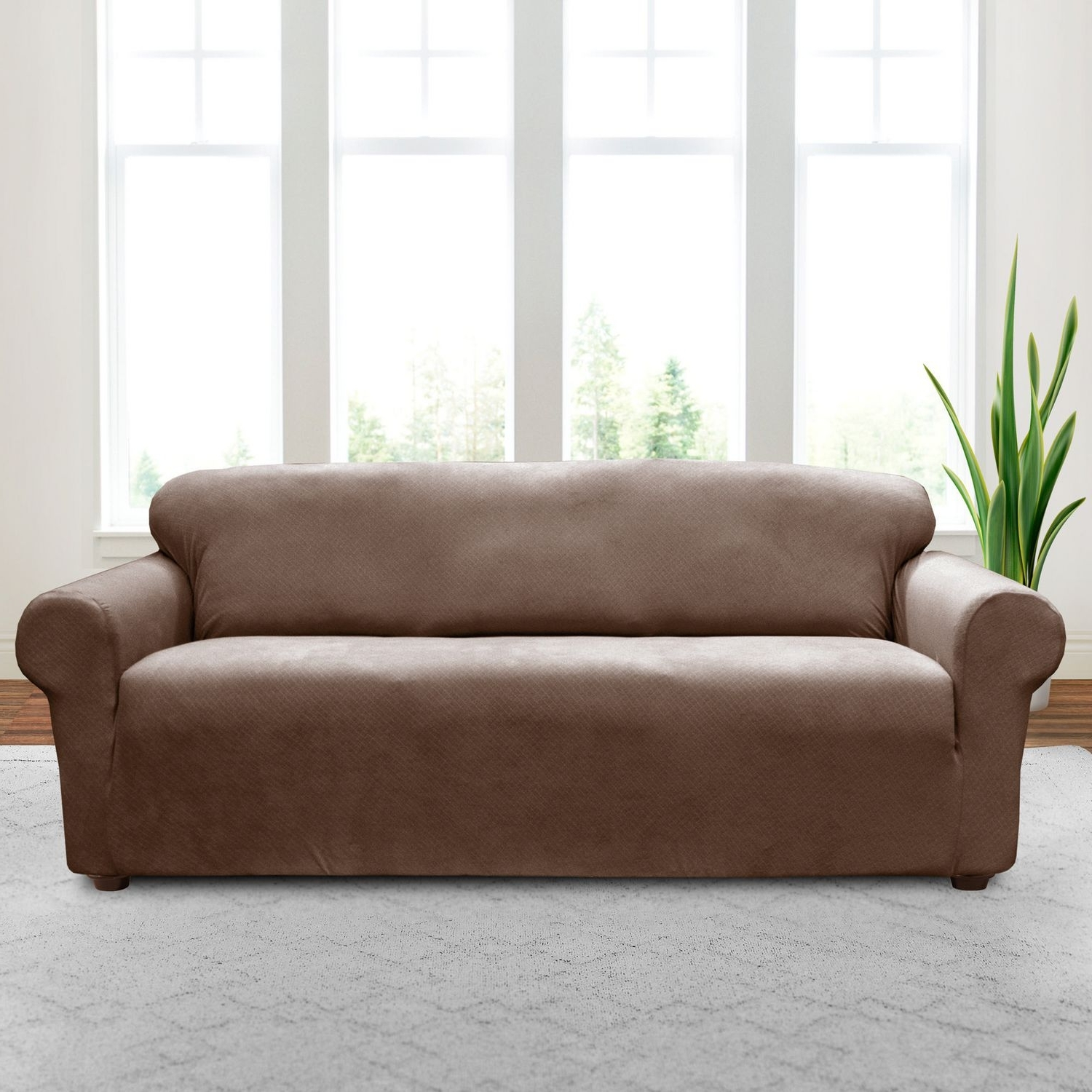 Sofa (Gallery 13 of 20)