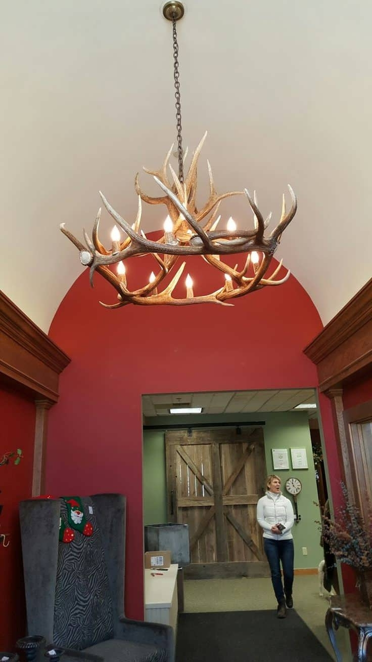 Stag Horn Chandelier Within Most Recently Released Chandelier : Antler Table Lamp Antler Lampshade Deer Antler Lights (View 17 of 20)