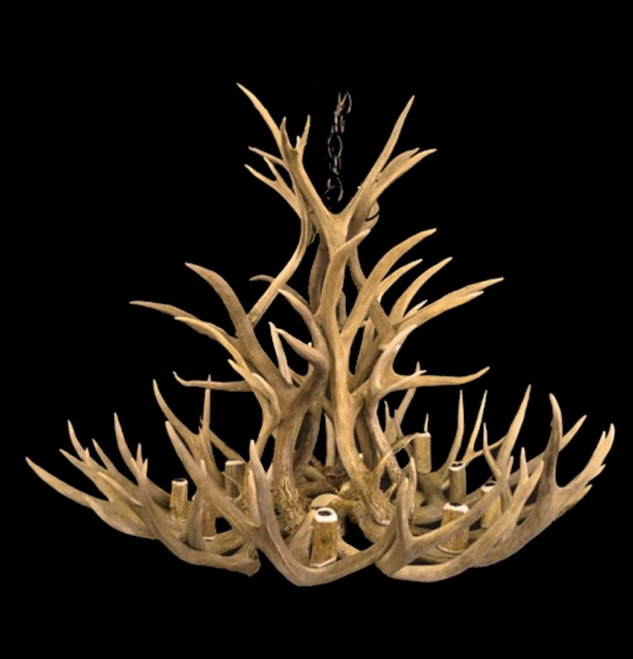 Stag Horn Chandelier Within Most Up To Date Chandelier : Stag Horn Chandelier Antler Chandelier For Sale Stag (View 18 of 20)