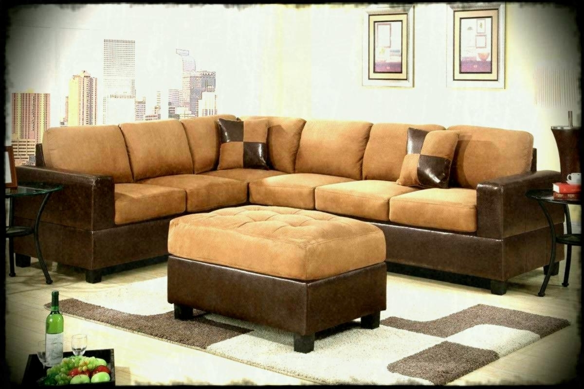 Trendy Roanoke Va Sectional Sofas Intended For Furniture Couches Sleeper Sectional Sofa Big Lots Sofas And (View 19 of 20)