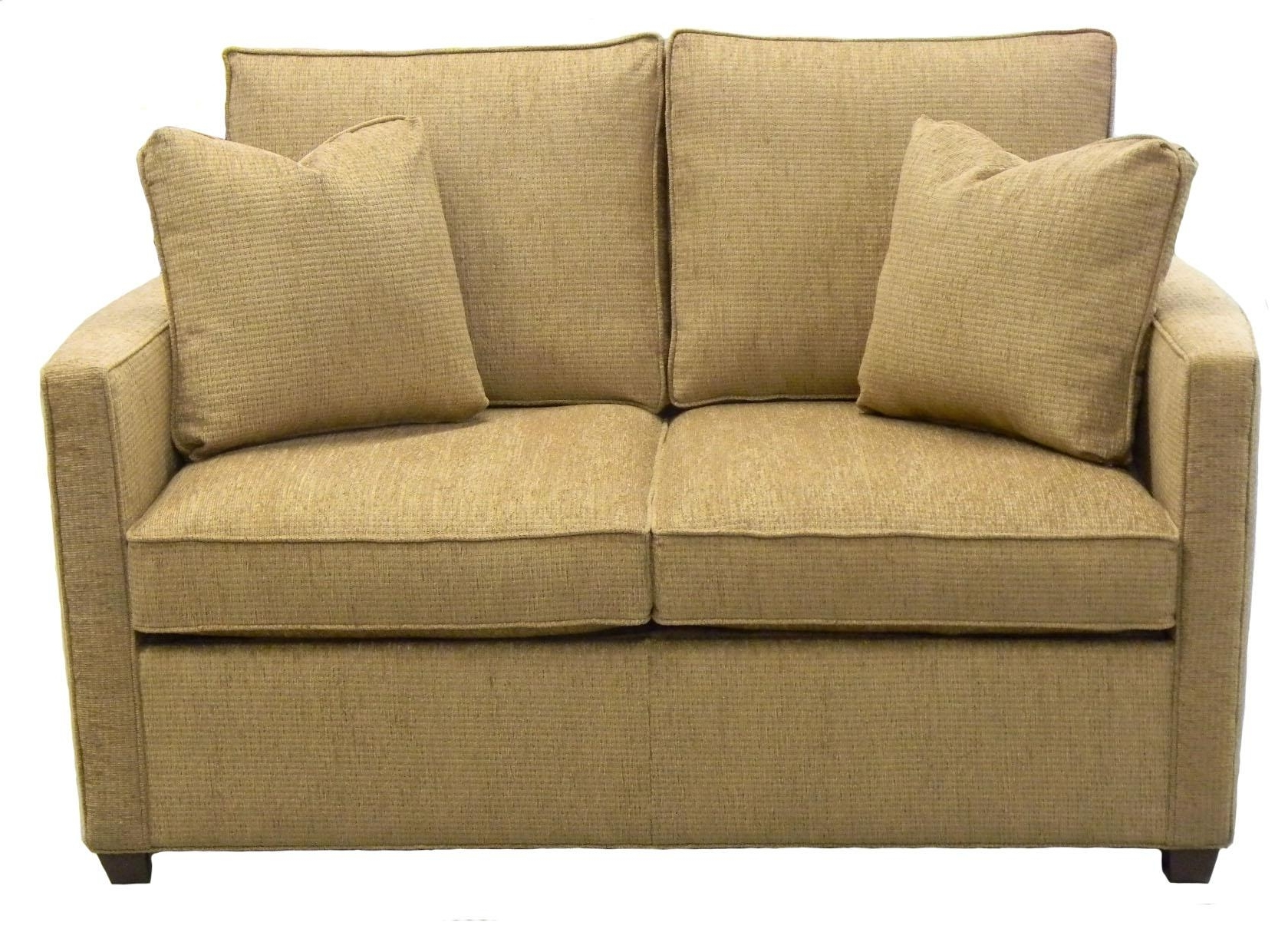Twin Sofa Chairs Within Best And Newest Furniture : Loveseat Sleepers Elegant Sleeper Chair Ikea Ikea Ps (View 15 of 20)