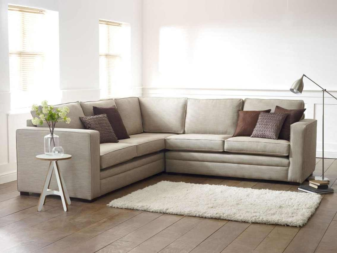 Well Known L Shaped Sectional Sleeper Sofas With Regard To Uncategorized : Special Sofa Design For Best Sectional Sofa Design (View 18 of 20)