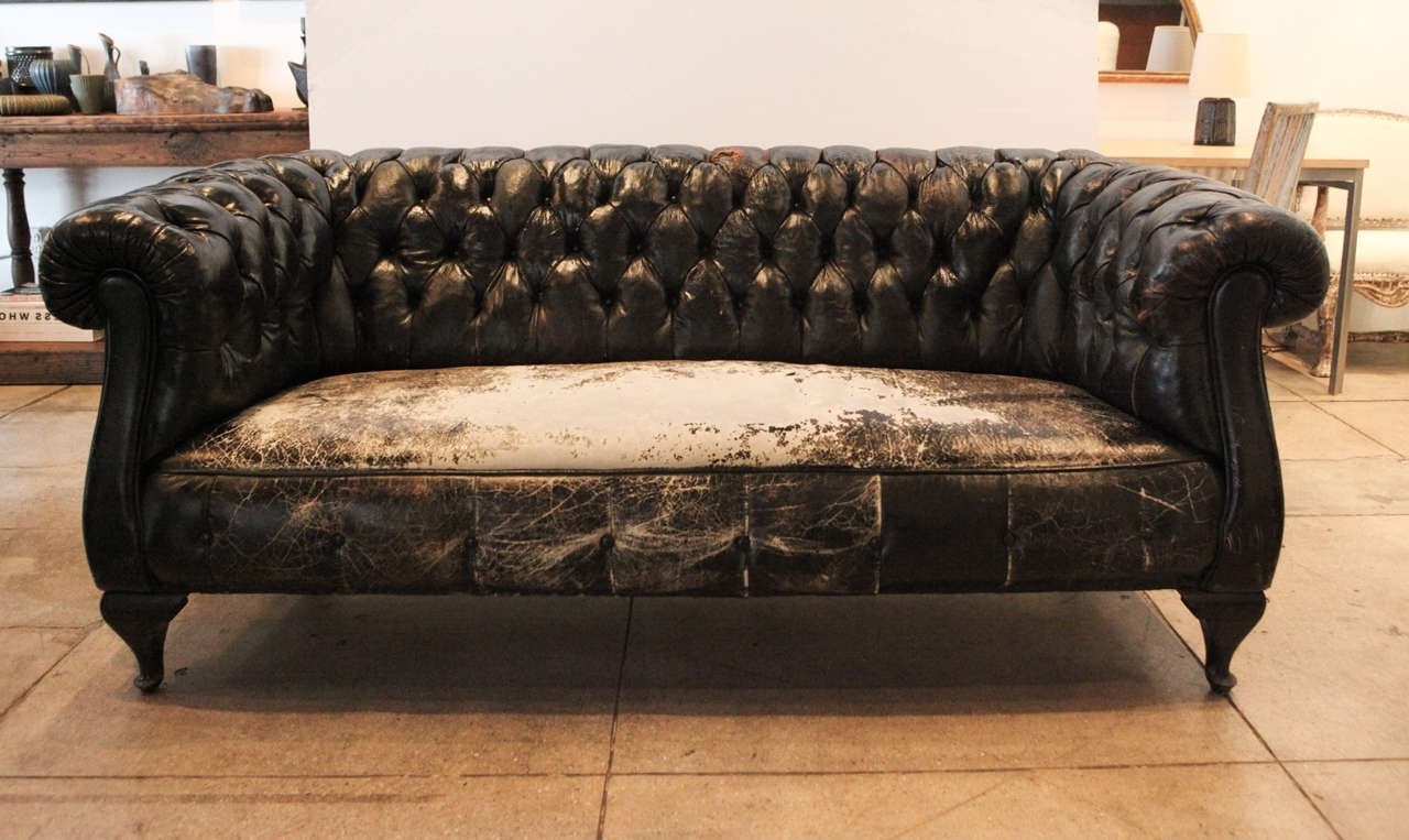 Well Known Leather Chesterfield Sofa Ideas — Fabrizio Design : Leather Pertaining To Vintage Chesterfield Sofas (View 5 of 20)