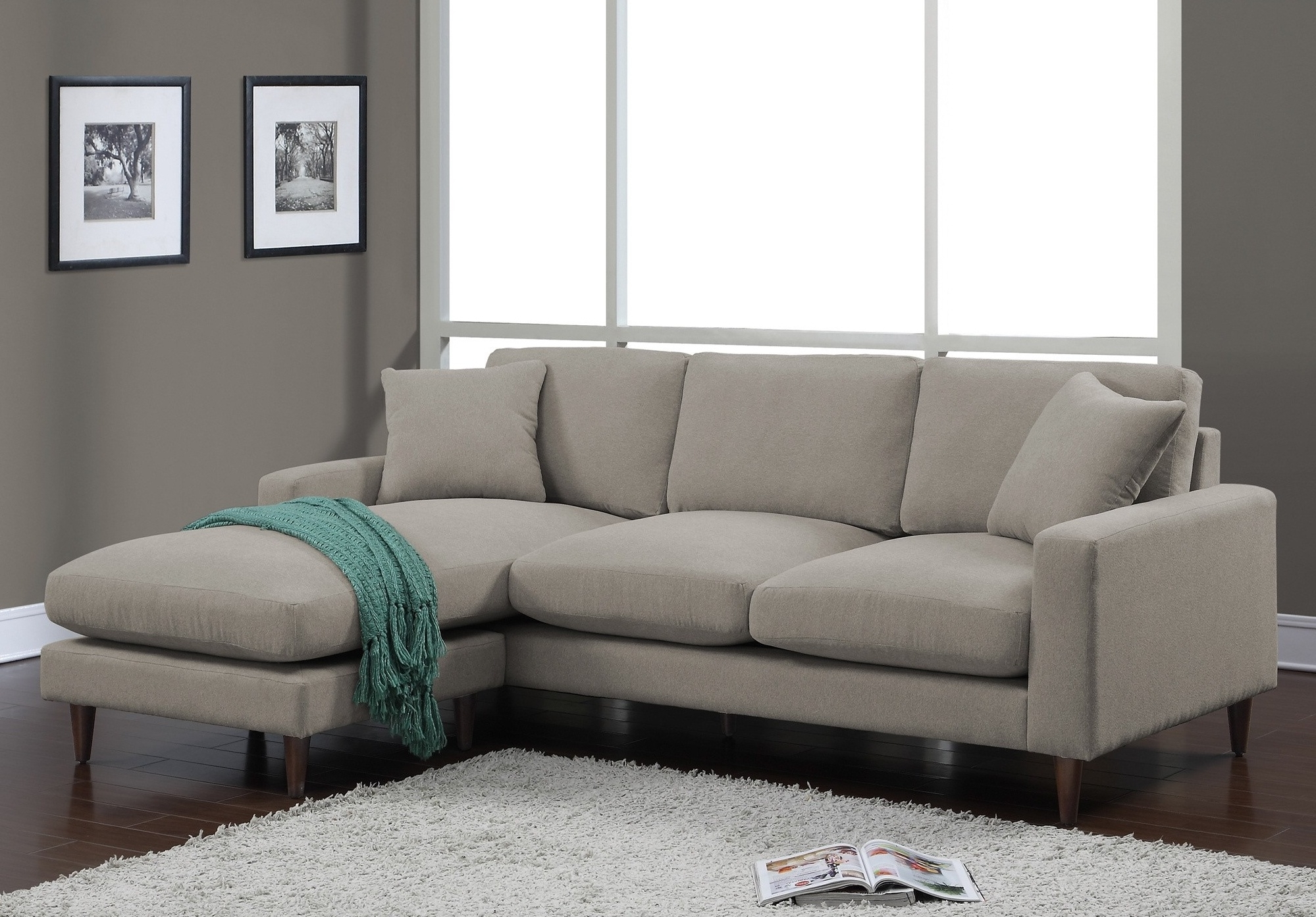 Well Known Lovable Sleeper Sofa With Chaise Lounge Alluring Living Room Within Target Sectional Sofas (View 18 of 20)