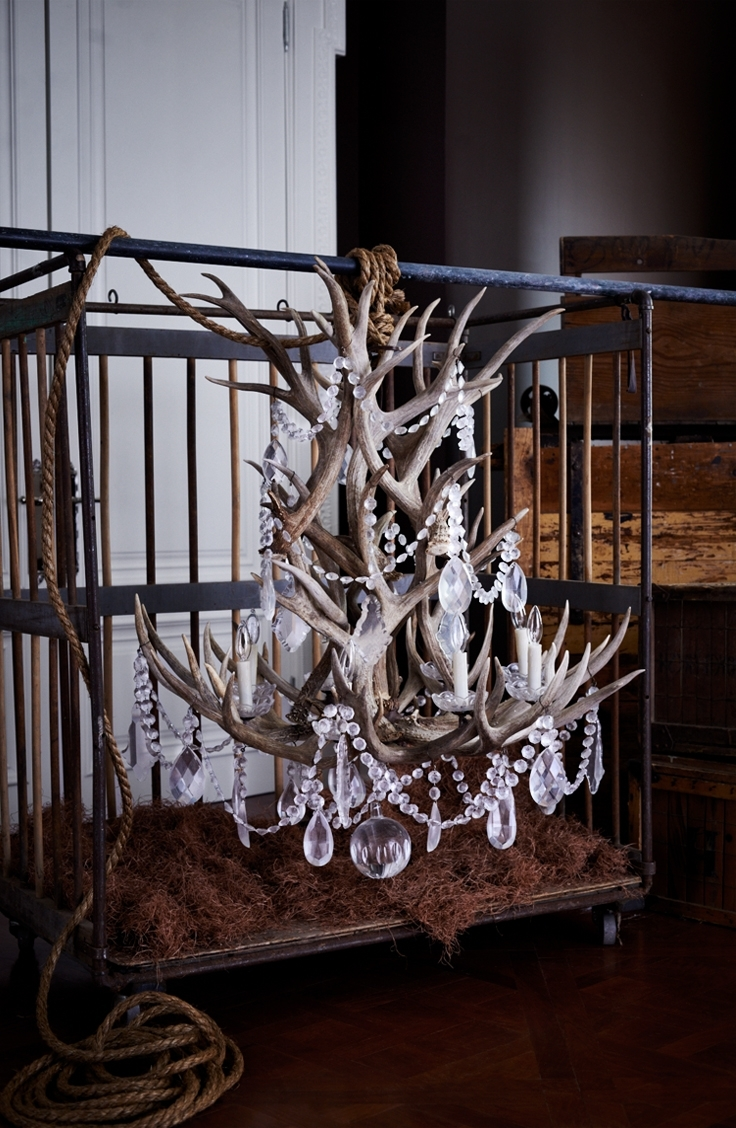 Well Known Stag Horn Chandelier For Ralph Lauren Home's Stag Chandelier Combines Naturally Shed Antlers (View 9 of 20)