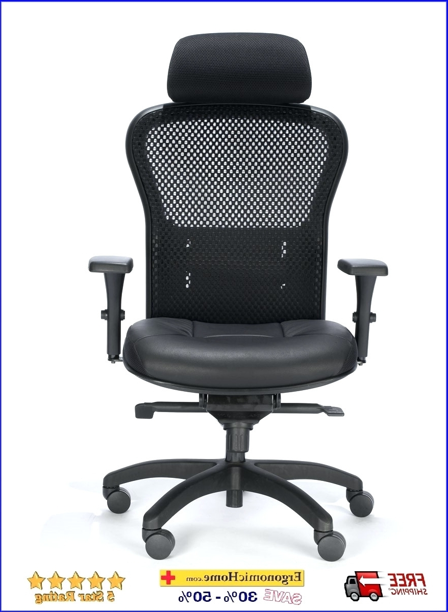 Well Liked Petite Office Chairs Ergonomic Rfm Executive Mesh Chair W Headrest Intended For Petite Executive Office Chairs (View 3 of 20)