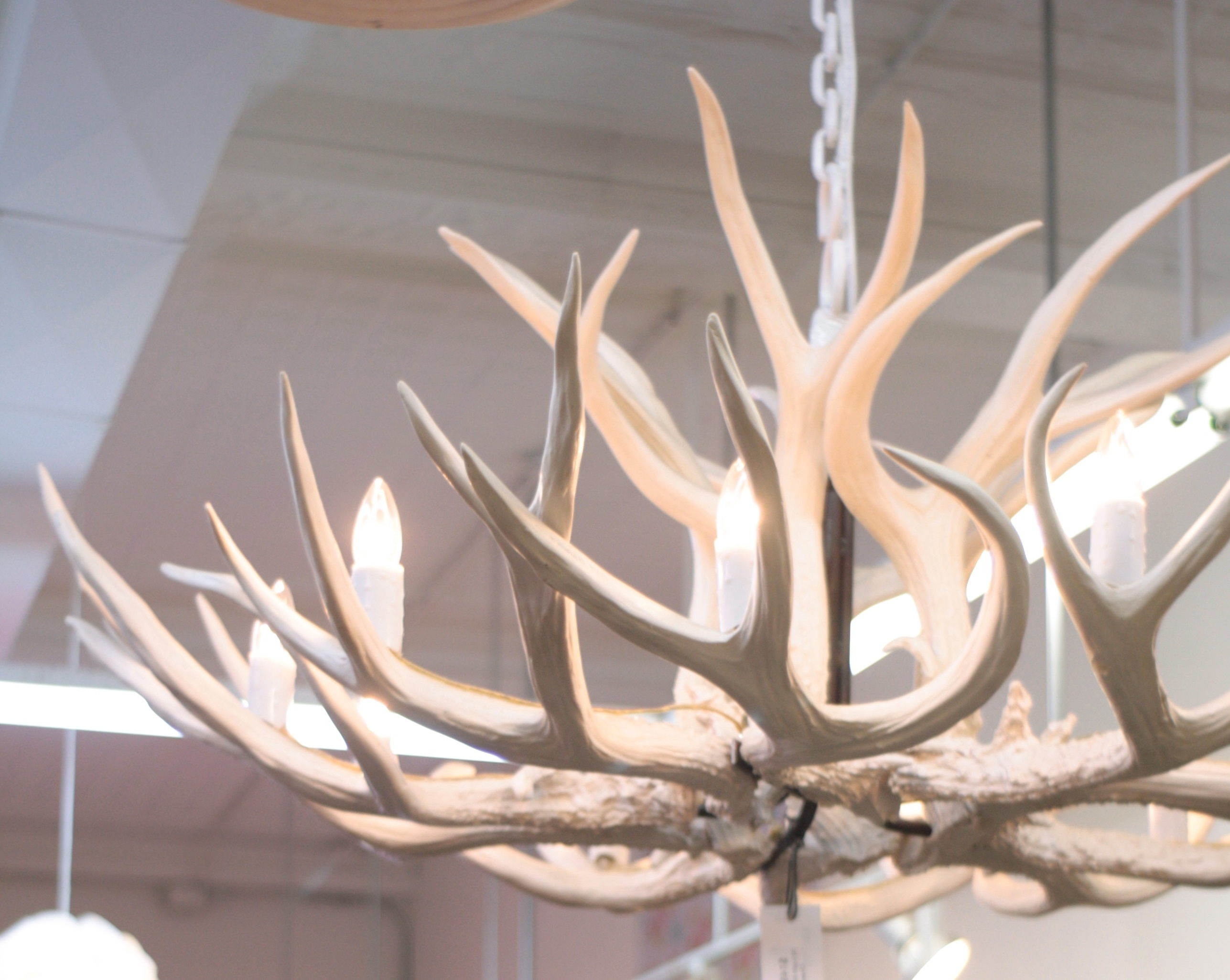 White Antler Chandelier – Otbsiu Inside 2018 White Antler Chandelier (View 17 of 20)